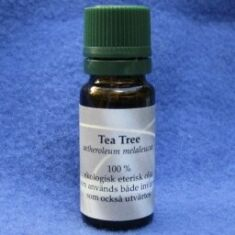 Tea Tree Oil 10 ml eko